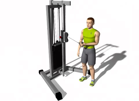 standing low pulley singlearm shoulder external rotation